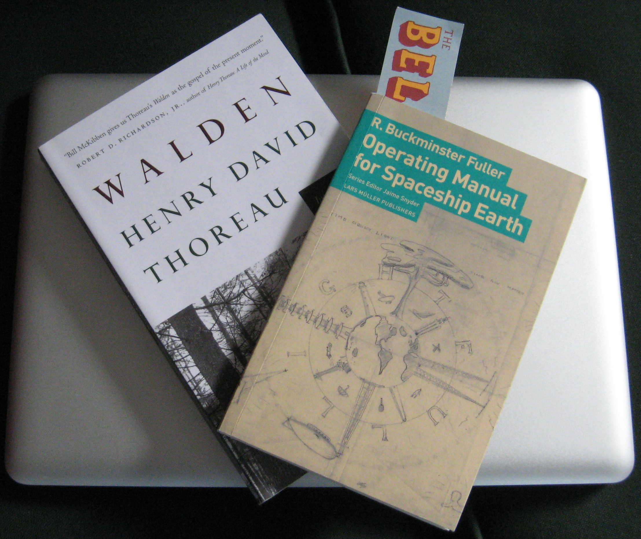 Alternatives to prison essay