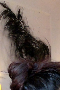 Hair Bun with Rooster Tail.
