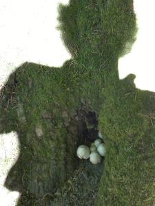 Self Portrait with Mushrooms