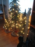 Artificial Trees with Tele Tree (1982 Squire, one of first from new Fender factory in Japan)