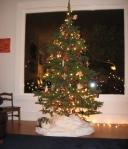 Zoe under the tree.