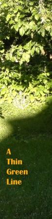 A Thin Green Line