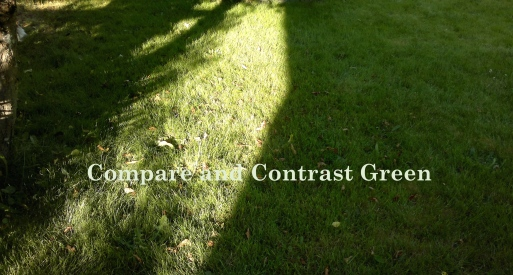 Compare and Contrast Green