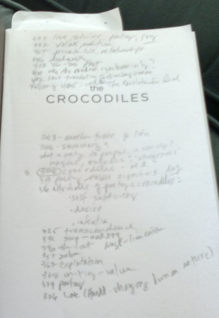 Crocodiles 4