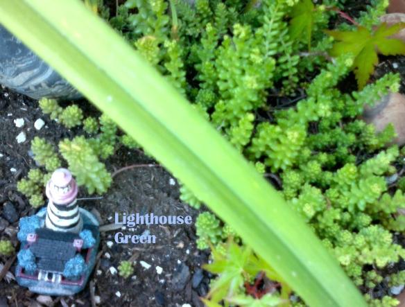 Lighthouse Green
