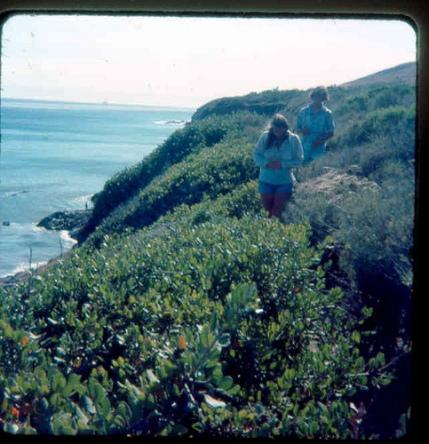 on trail above Gaviota