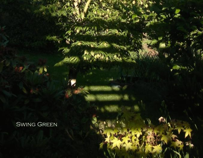 Swing Green