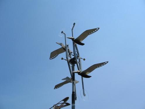 Birds in Dystopia