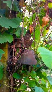 overgrown bell